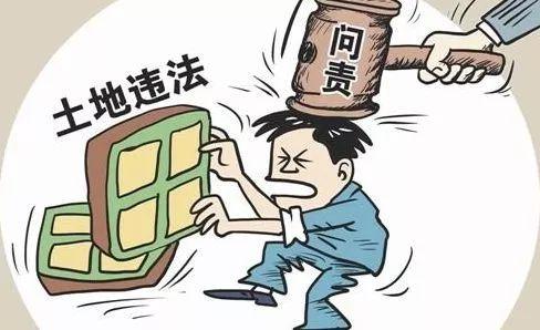 工作失责致使村民违法占地建设,聊城东阿一国土所干部被处分