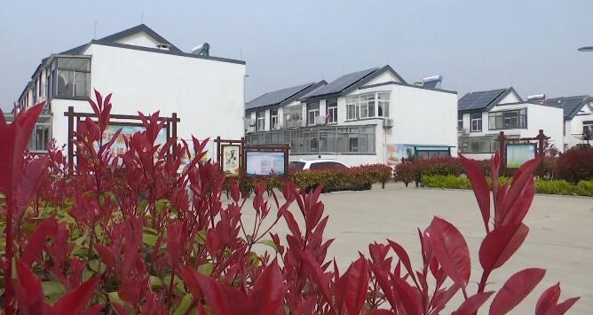 34秒丨日照东港区已建成美丽庭院示范户6410户 村庄创建率达85%