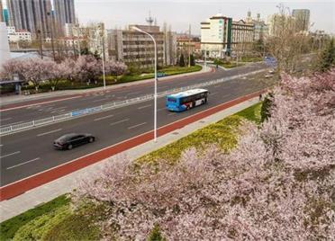 4月26日起 荣成公交将执行夏季运营时间