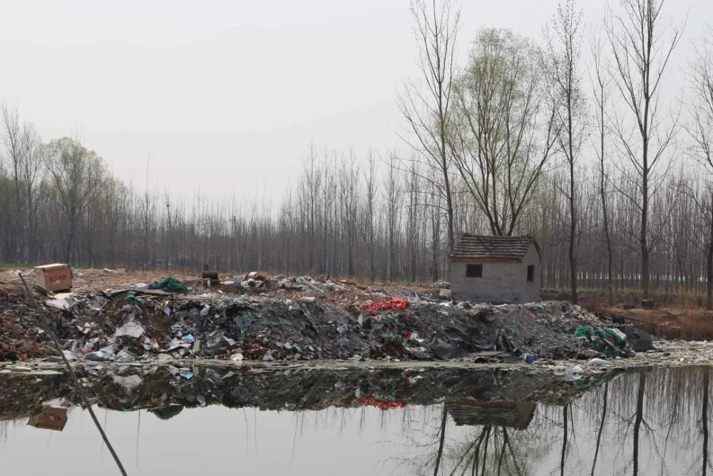 济宁:鱼塘里不养鱼专倒垃圾,7人犯环境污染罪被判刑