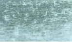 海丽气象吧丨滨州未来三天多雷雨或阵雨,局地冰雹