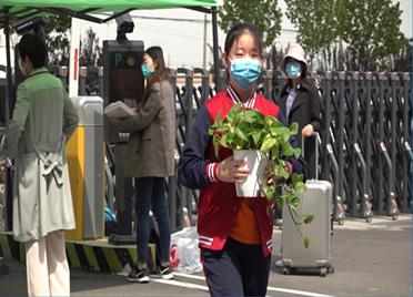 31秒|抱着绿萝返校  滨州初高中非毕业年级开学复课
