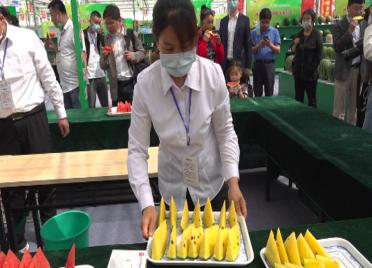 77秒丨全国651个西(甜)瓜新品种亮相潍坊昌乐