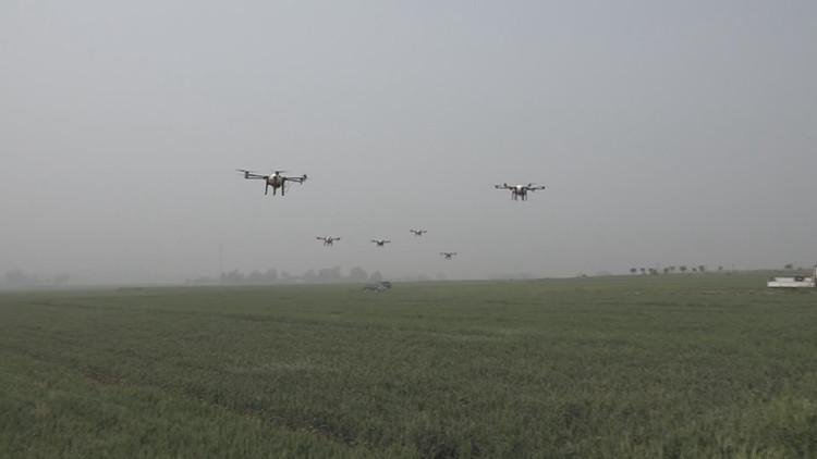 38秒|田间管理、病虫害防治,潍坊临朐用上了无人机