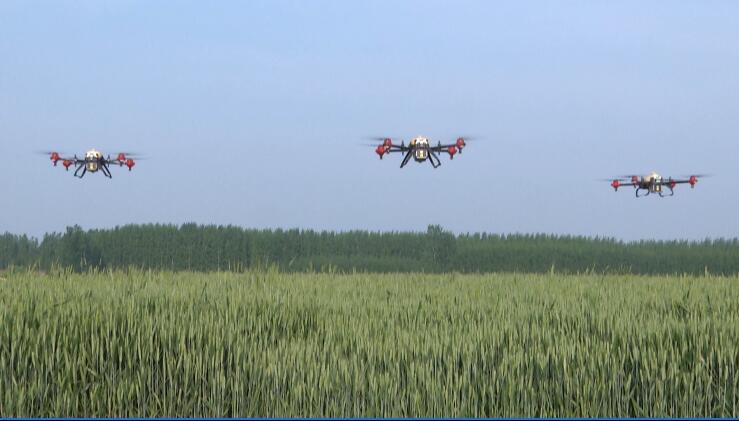 53秒|潍坊安丘市:植保无人机助阵防治病虫害 助力小麦丰产丰收