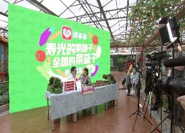 """永不落幕!""""线上菜博会""""""""寿光蔬菜馆""""正式上线"""