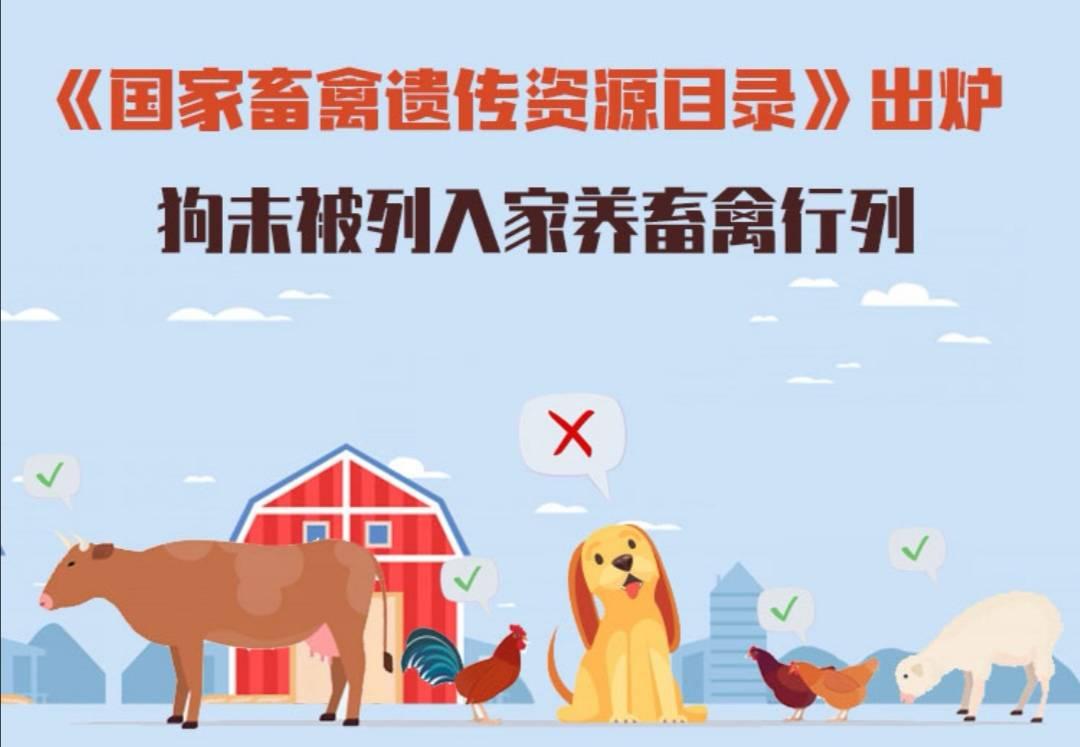 一图看懂《国家畜禽遗传资源目录》!狗未被列入家养畜禽行列