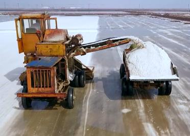 滨州沾化17万亩盐田进入收获期 44秒视频看百里盐滩采收忙