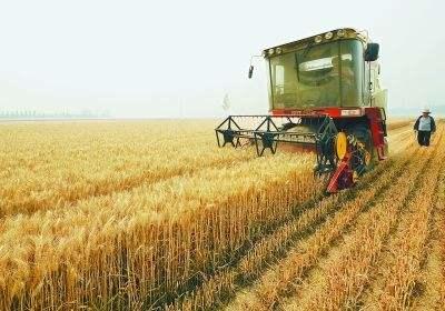 """济宁""""夏收""""工作进入尾声 收获小麦超500万亩"""