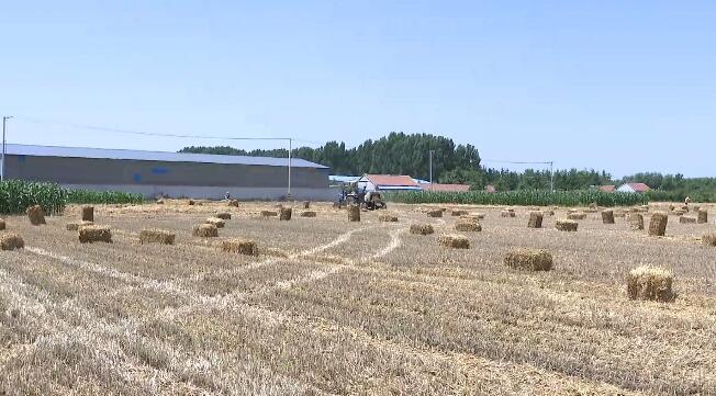 27秒丨日照:推广先进农机技术 综合利用秸秆