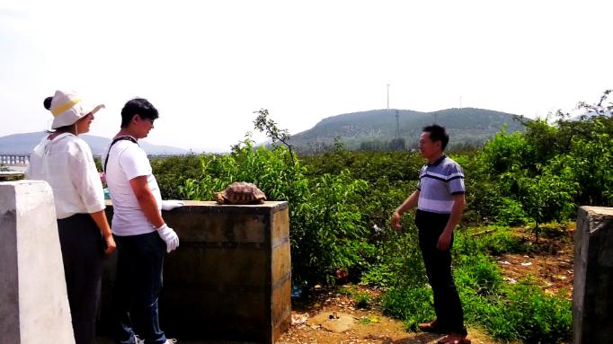 44秒 枣庄滕州村民水库边捡到一只大龟,竟是国家二级保护动物