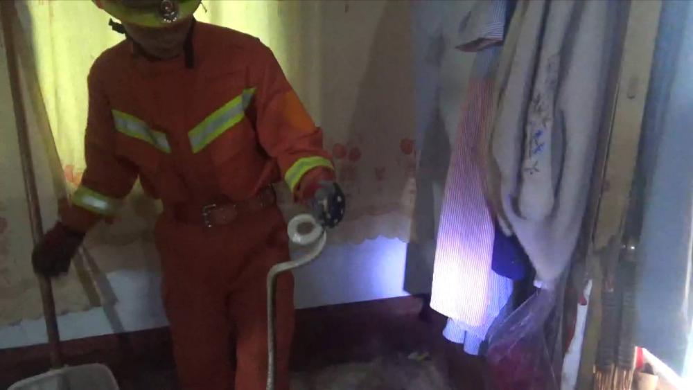 34秒丨临沂一村民家天花板内有蛇出没 消防员用手机和自拍杆定位淡定抓蛇