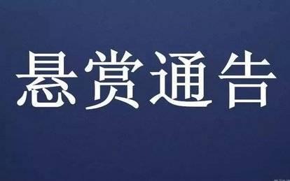 济南警方公开悬赏抓捕2名涉黑在逃人员!见到立即报警!