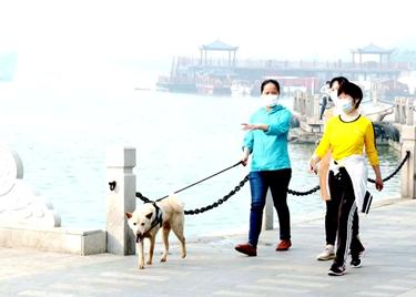 37秒|《聊城市养犬管理条例》9月1日起施行!请记得给爱犬免疫、登记