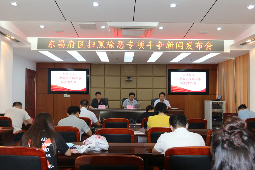 受理恶势力案件17件86人,聊城东昌府区法院发布扫黑除恶专项斗争成果