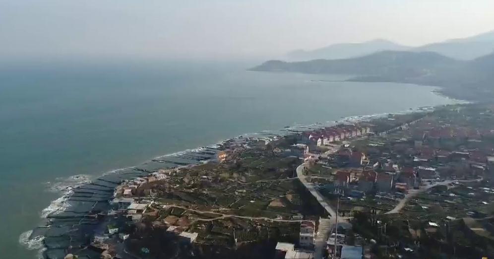 这就是山东丨山海小城的幸福集市 来青岛王哥庄600年大集感受别样烟火气