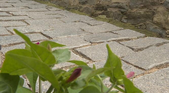 """28秒丨日照五莲石场乡创新实施""""巷巷通""""工程 群众满意度大幅提升"""