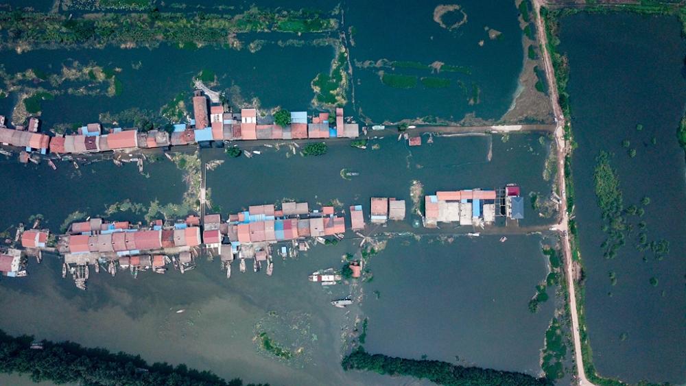 直击防汛一线|航拍湖北洪湖被淹村庄:房屋浸水,农田被淹