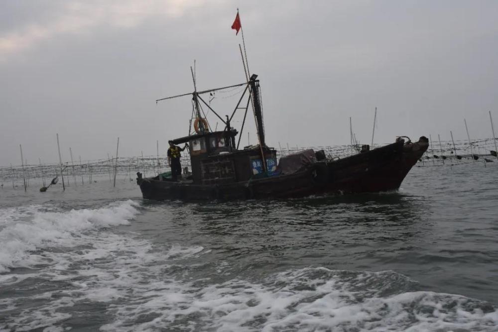 日照岚山区开展海上突击执法检查 查获违法捕捞渔船24艘!