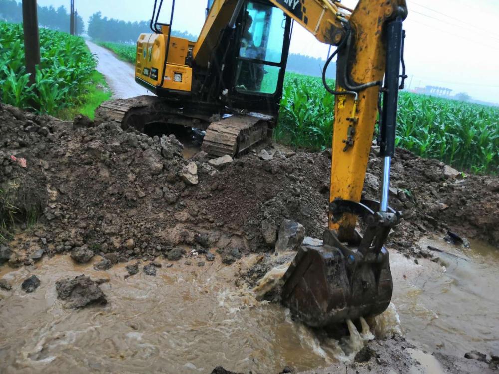 """今日降雨量已达128毫米!枣庄峄城区阴平镇进入防汛""""战时状态"""""""