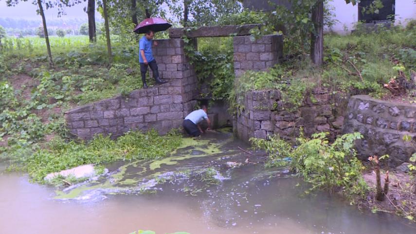 43秒丨暴雨致村庄内涝,枣庄台儿庄党员干部投身防汛一线清理河道保证排水