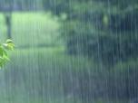 海丽气象吧丨滨州发布降水预报 未来一周多雷雨或阵雨