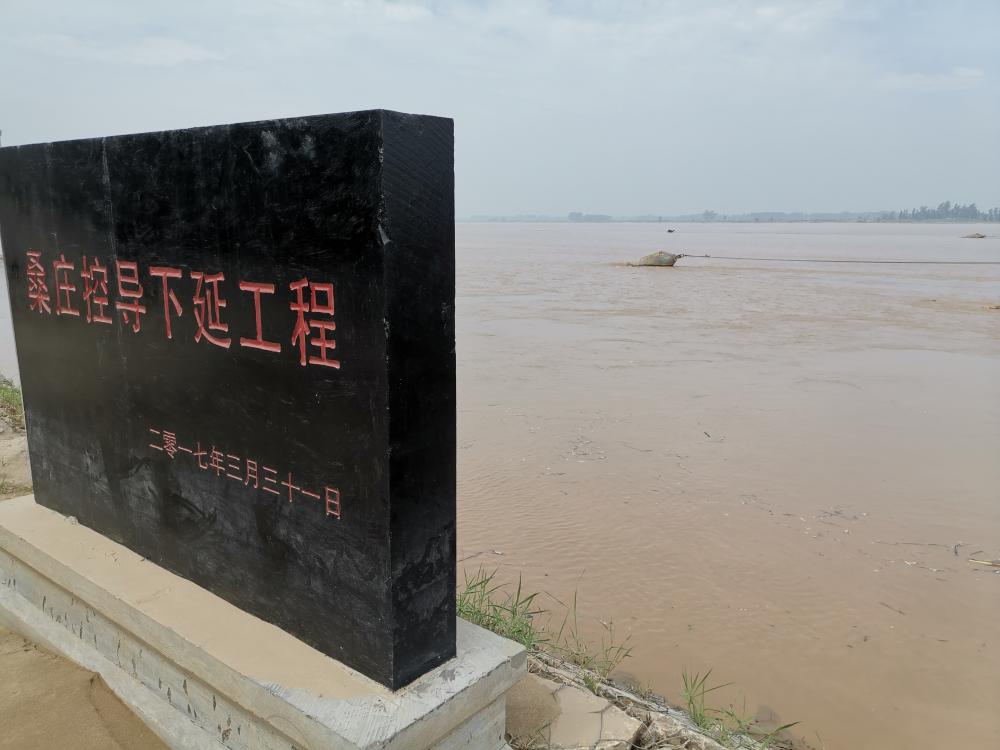 乘风破浪奔小康|鄄城县桑庄控导工程:稳河槽 护滩区 守护滩区人民安全