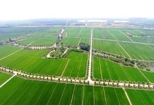 公示!山东拟奖励10个高标准农田建设任务成效明显城市