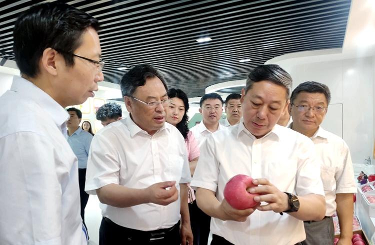 集聚果业科技创新资源!山东苹果·果业产业技术研究院落户烟台高新区