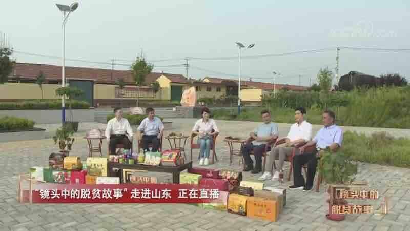 """平度供电""""第一书记""""郭召丛走进央视网直播分享""""萝卜""""经"""