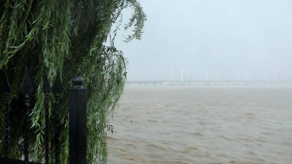 海丽气象吧丨最大降水量在阳谷349毫米 明天山东鲁西北和鲁中地区仍有降雨