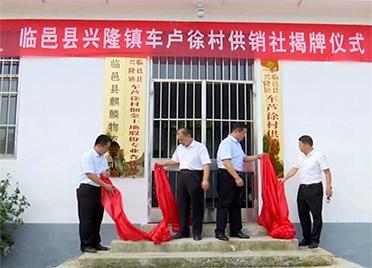 """服务""""三农""""助力乡村振兴 德州村级供销社已挂牌成立6家"""