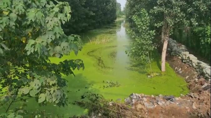 济宁开展河流断面水质保障专项检查 这两处地点被曝光