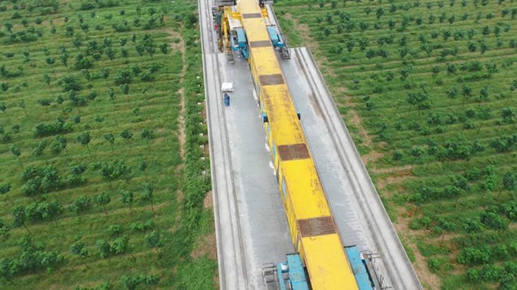 55秒丨鲁南高铁三标段桥梁架设预计今日完工 无砟轨道建设将全面铺开