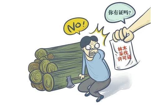 日照俩人砍着自己买的树,突然就违法了?