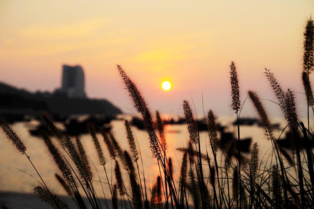 组图丨霞光洒满海面,夕阳下的海边更有别样美