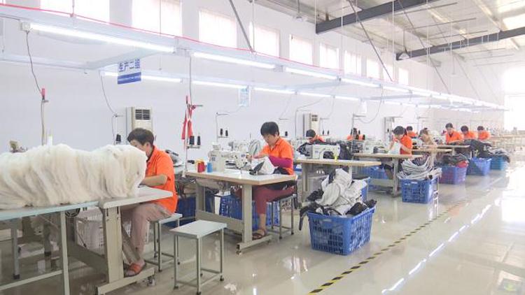 """36秒丨滨州市沾化区多措并举 实现贫困群众""""家门口""""稳定就业"""