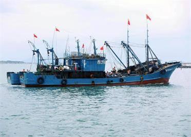 密切监控安全状况!威海乳山773艘牡蛎养殖船上岸避风