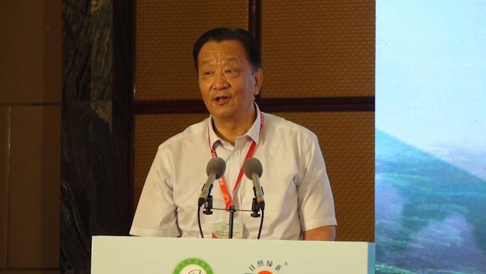中国茶叶流通协会会长王庆日照说茶:日照绿茶是传统绿茶中的新贵