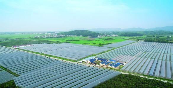 30秒直击发布会|济南历城市级农业龙头企业达40家 绿色农业示范区面积达1万亩