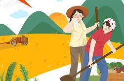 圖解 | 山東秋糧長勢總體良好!預計2020年全年糧食總產達5431.6萬噸