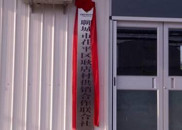 43秒|聊城首家!茌平耿店有了村级供销社,一站式服务助推乡村振兴