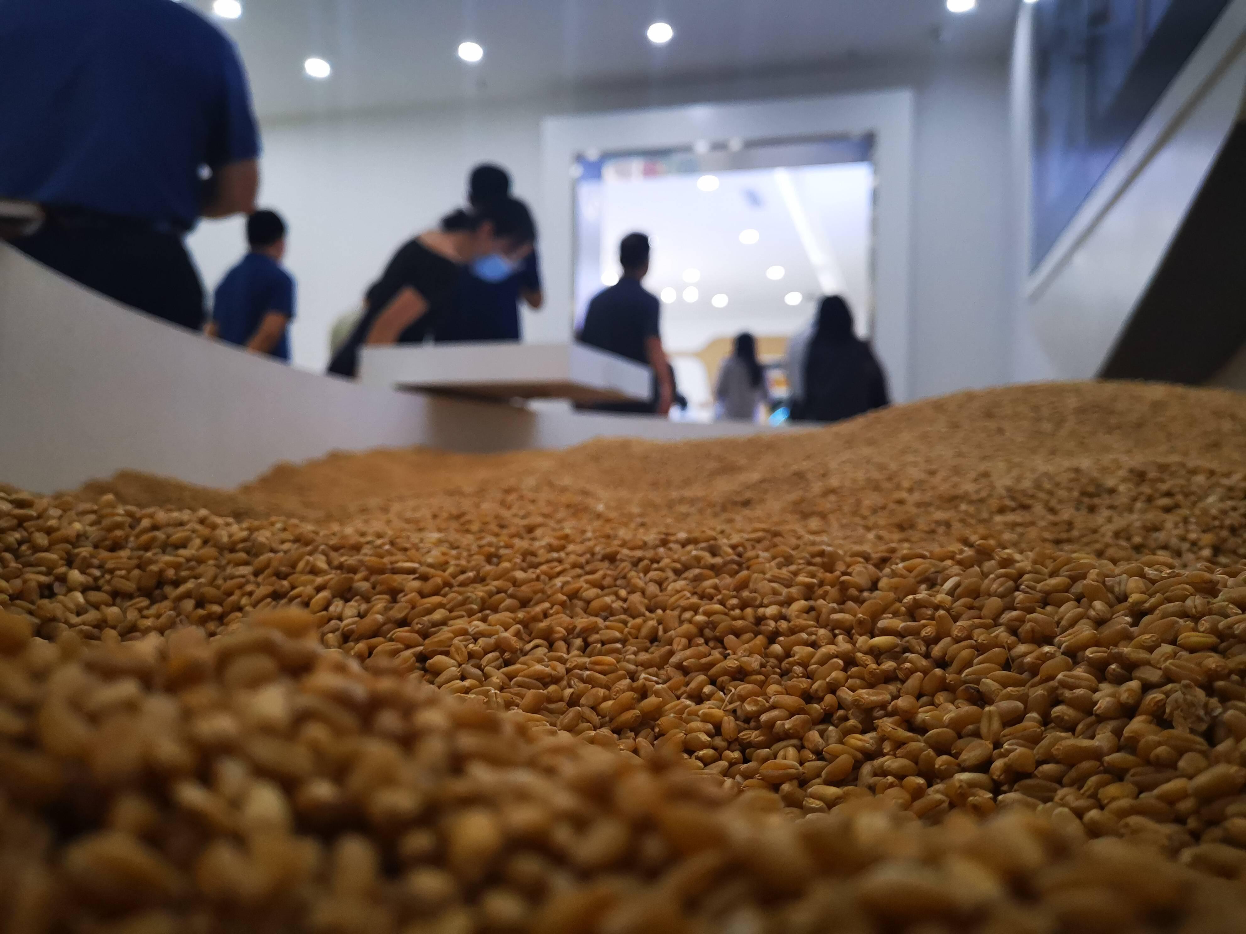"""大河奔腾丨""""一粒小麦""""的产业链能做到多长?滨州中裕食品的这张图告诉你"""