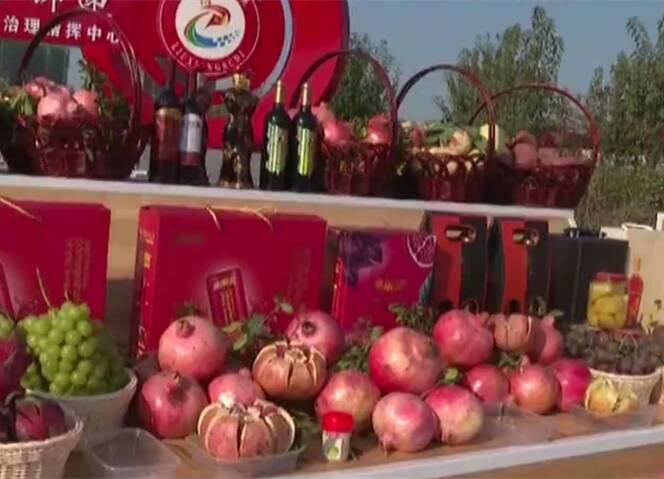 山东各地举行活动喜迎第三个中国农民丰收节