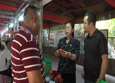 65秒丨4个棚丰产12万斤羊角蜜!潍坊高密乡村振兴服务队助力农民增产增收