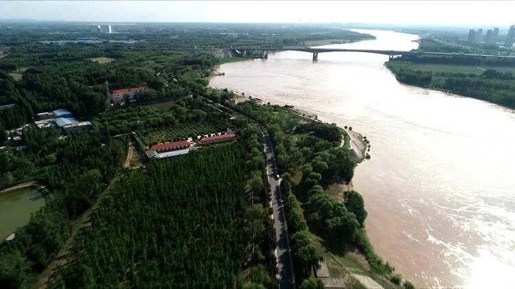 黄河下游力争上游微访谈丨济南黄河河务局工程管理处处长许洪印:打造2万多亩绿色大堤 筑牢黄河高质量发展生态底色