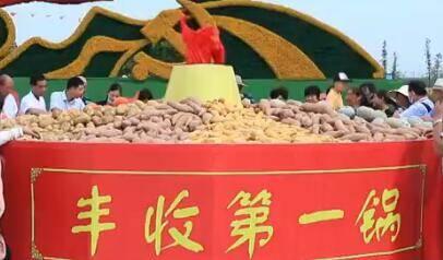 【喜庆中国农民丰收节】山东各地同庆丰收节 突出地域特色共迎小康