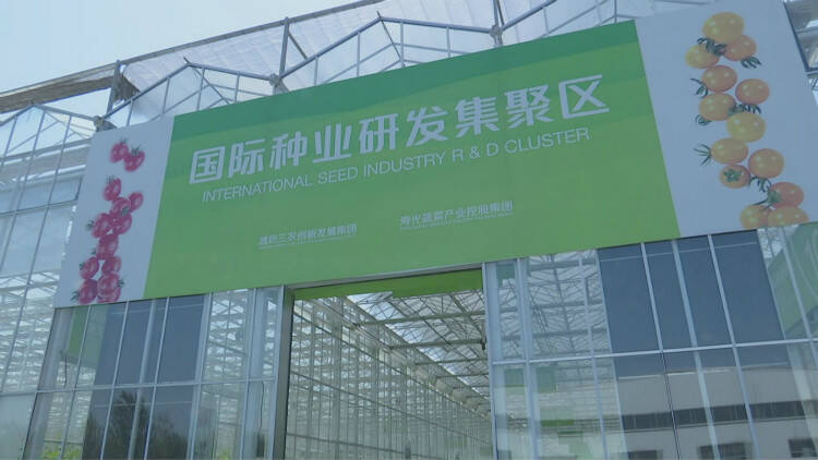 55秒│潍坊寒亭:聚焦重点片区建设 打造产业发展新高地