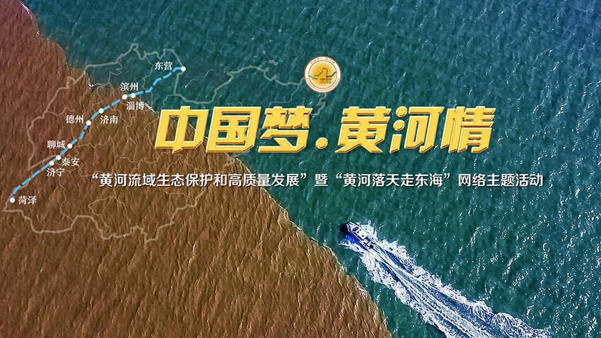 闪电评论丨加强黄河流域生态保护,激荡高质量发展春潮
