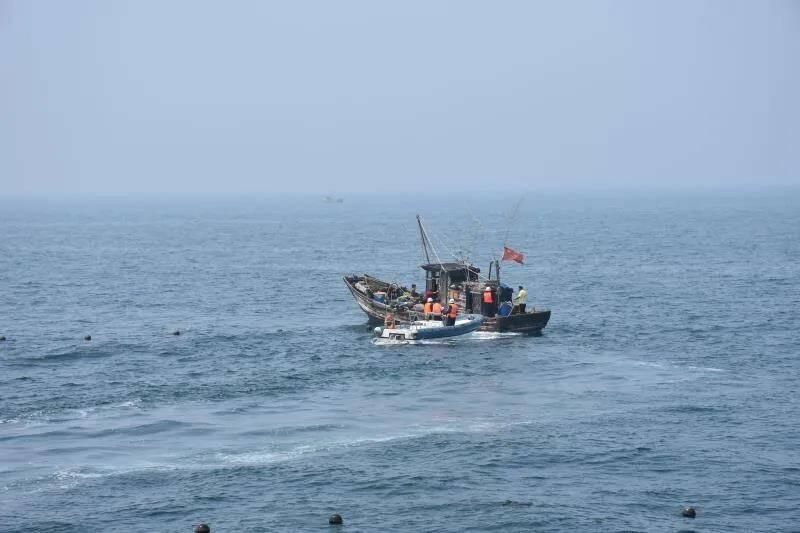 日照开展海洋渔业安全隐患拉网式大排查 已纠正违章违规行为19起